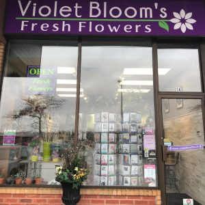 Violet Blooms Fresh Flowers Pickering