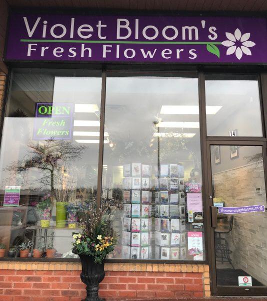 Violet Blooms Fresh Flowers Pickering